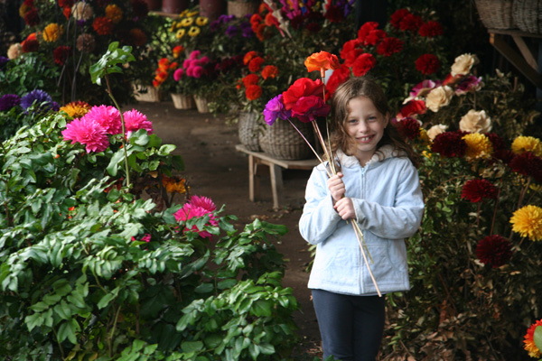 Irene in a wood flower shop in Pucon
