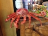 King crab in Puerto Varas