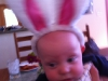 Sam the Easter Bunny