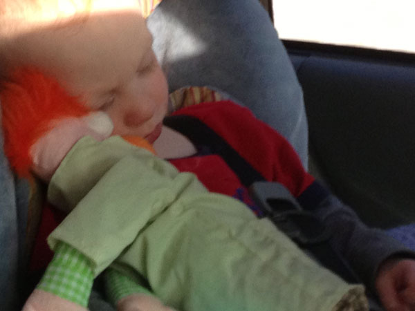 napping with Beaker in the car on the way home