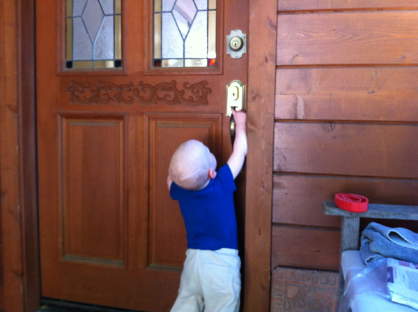 Sam the Anti-Preemie trying to get in the nextdoor neighbors house to play with their dog