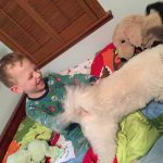 Sam the Anti-Preemie with his dogs